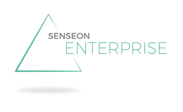 Senseon Enterprise  August 2019