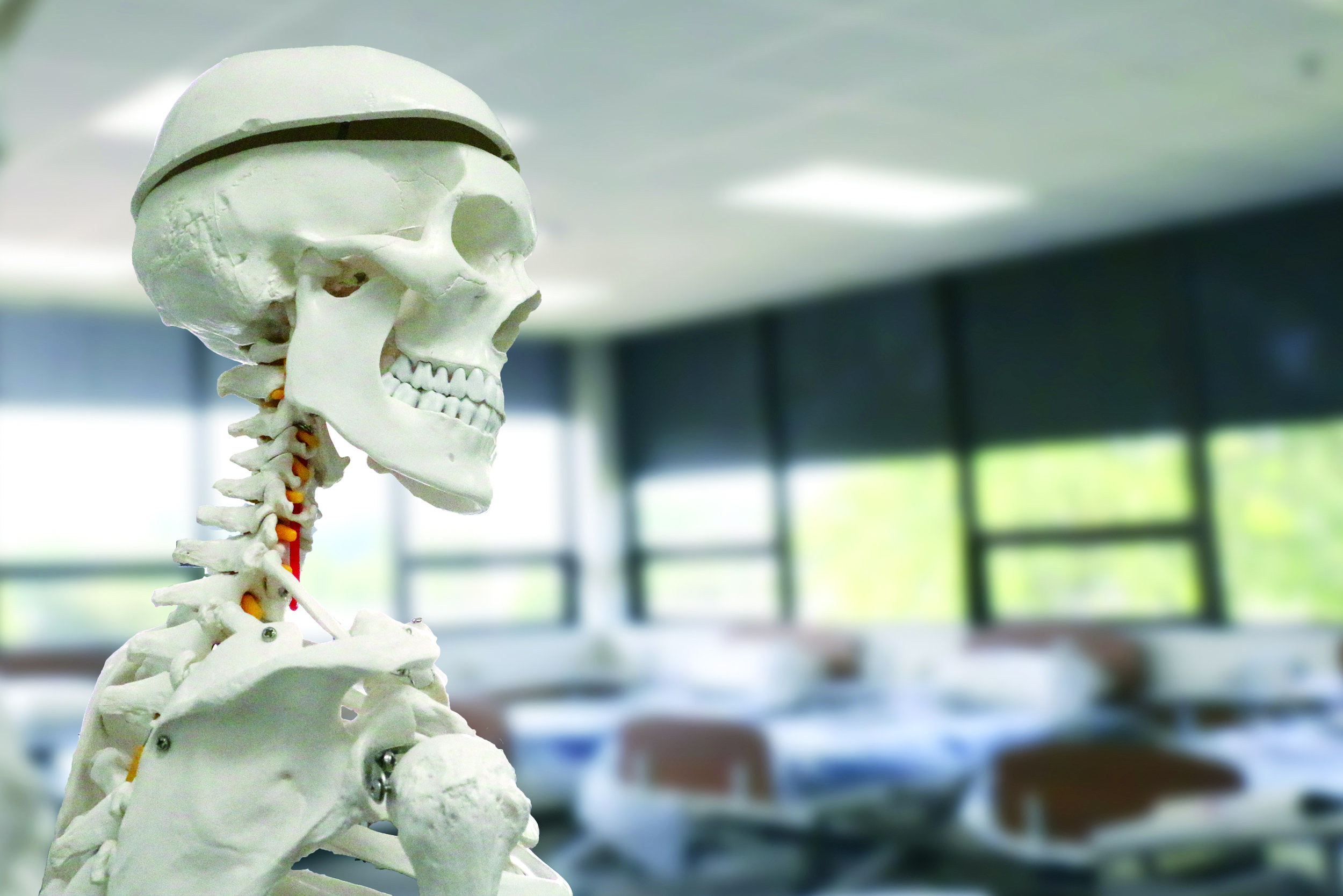 Health Careers: Medical Academy/Middle College