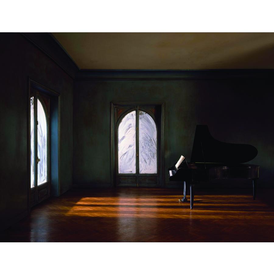 Square - Matton_The Grand Piano Tail in the Whitened Windows Living Room_1986.jpg