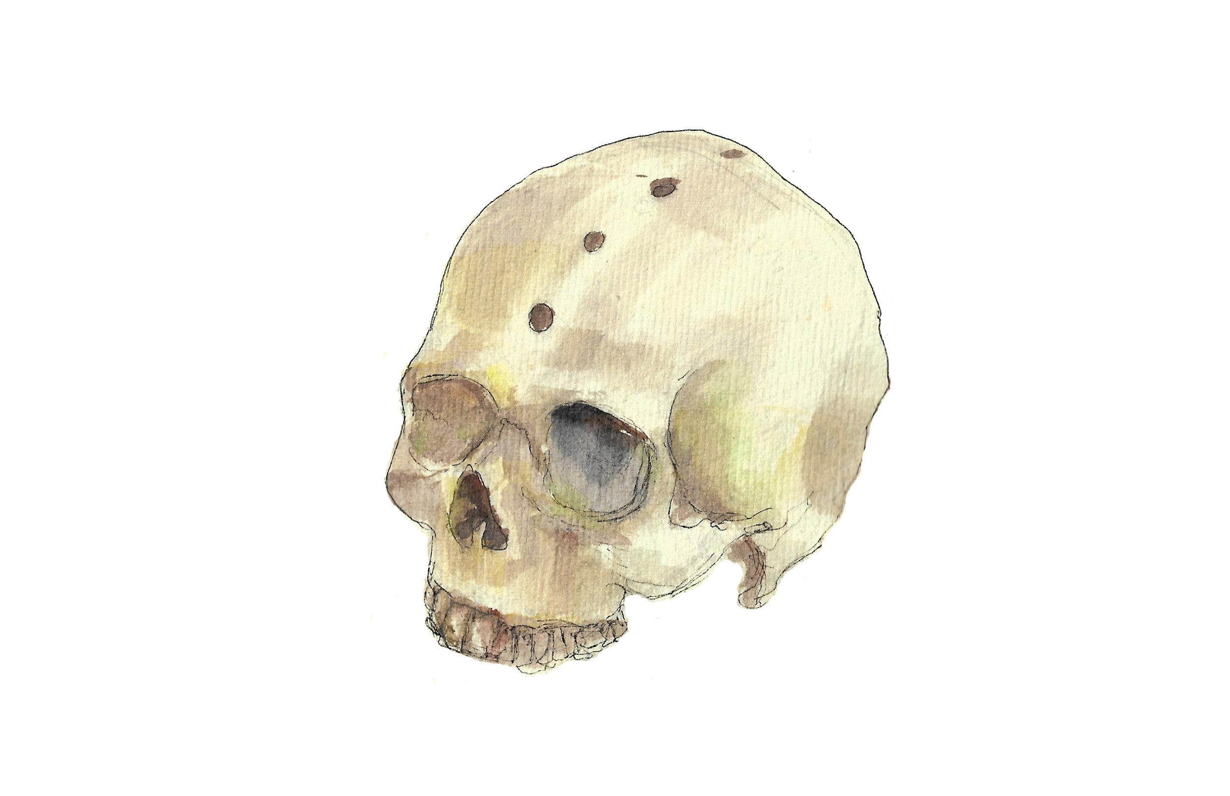 single skull.jpg