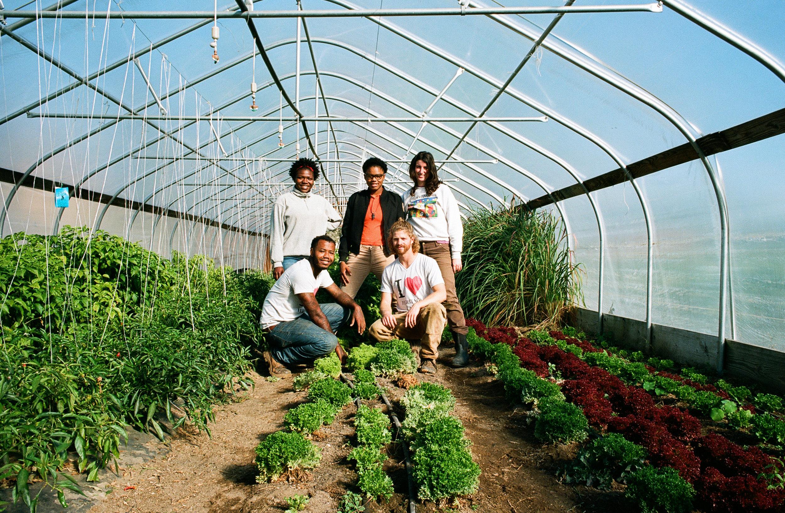 heritage farm - Kristina.jpg