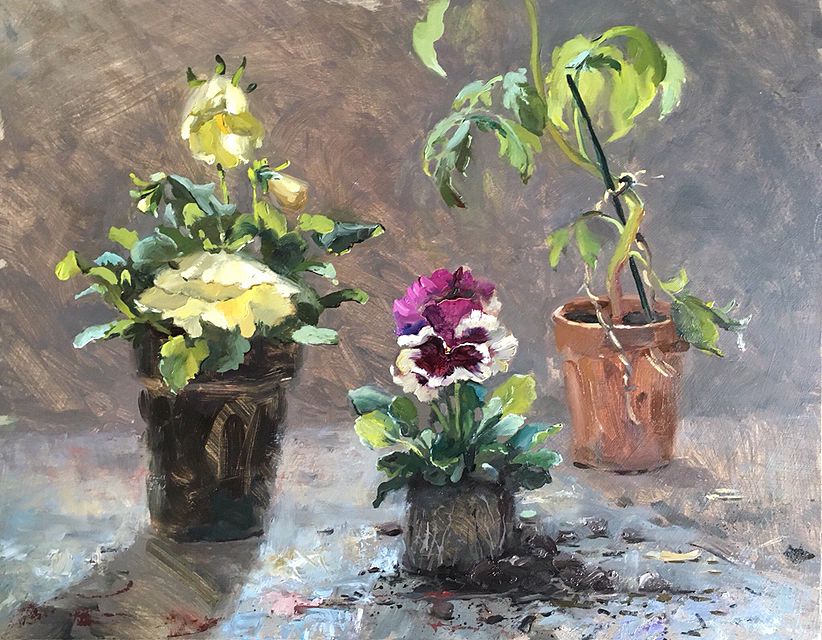 Pansies in the Potting Shed - RESERVED