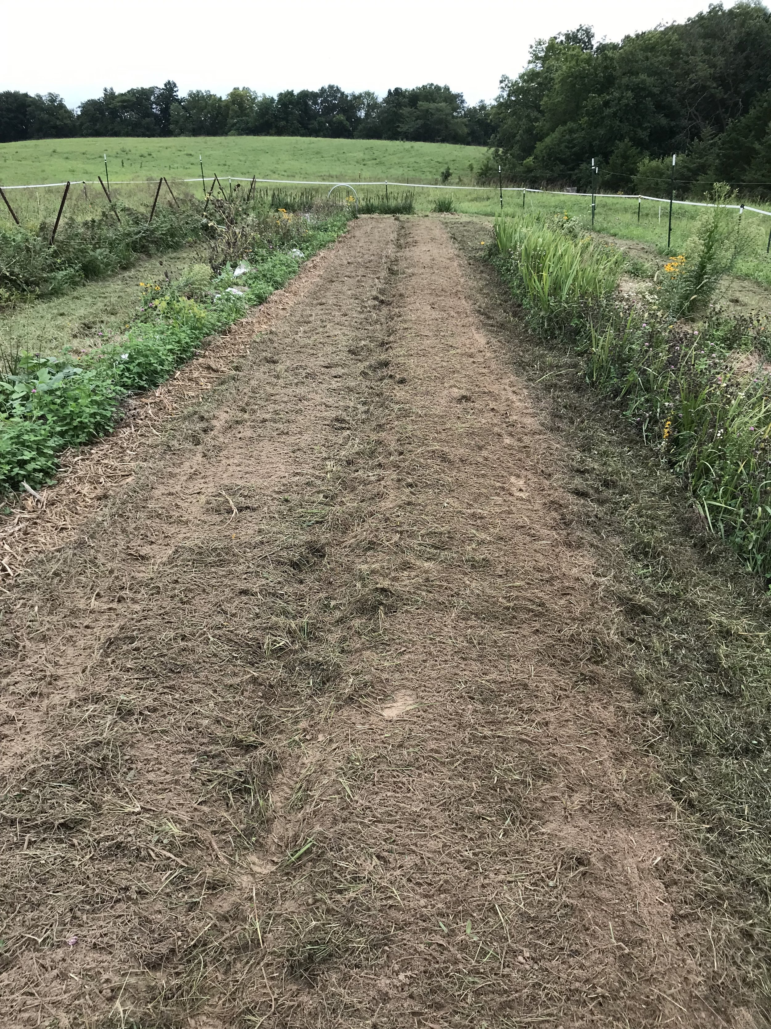 "Two beds after harrowing the top 1/2""."