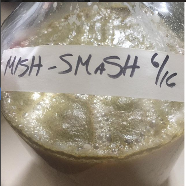 Pictured: not Sahti, but a Single Malt and Single Hop beer (a SMaSH) that went a bit awry when I ran out of both the malt and hop I planned on using and I had to fill in with other bits. Hence, not a SMaSH, but a MISH-SMaSH