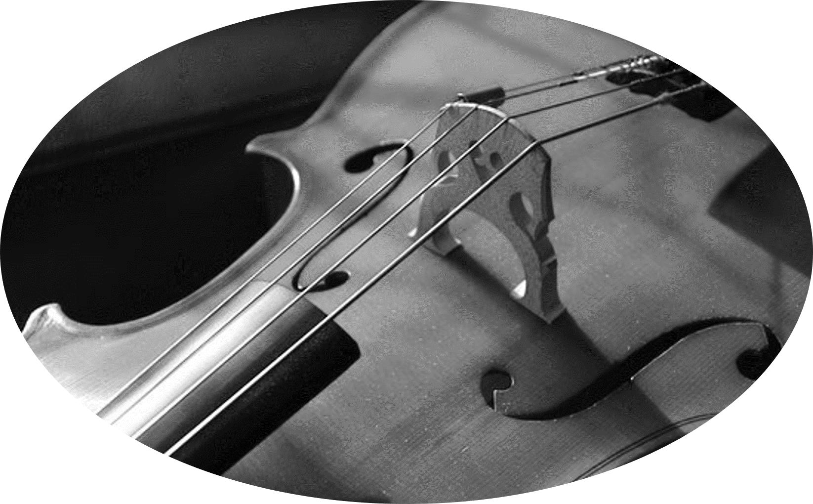 Violin & Viola -