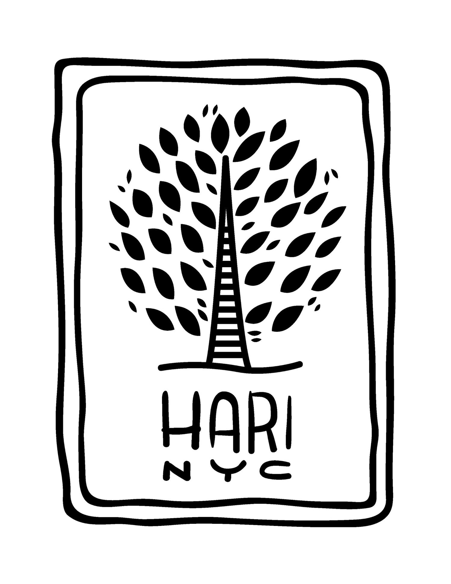 HARI NYC.jpg