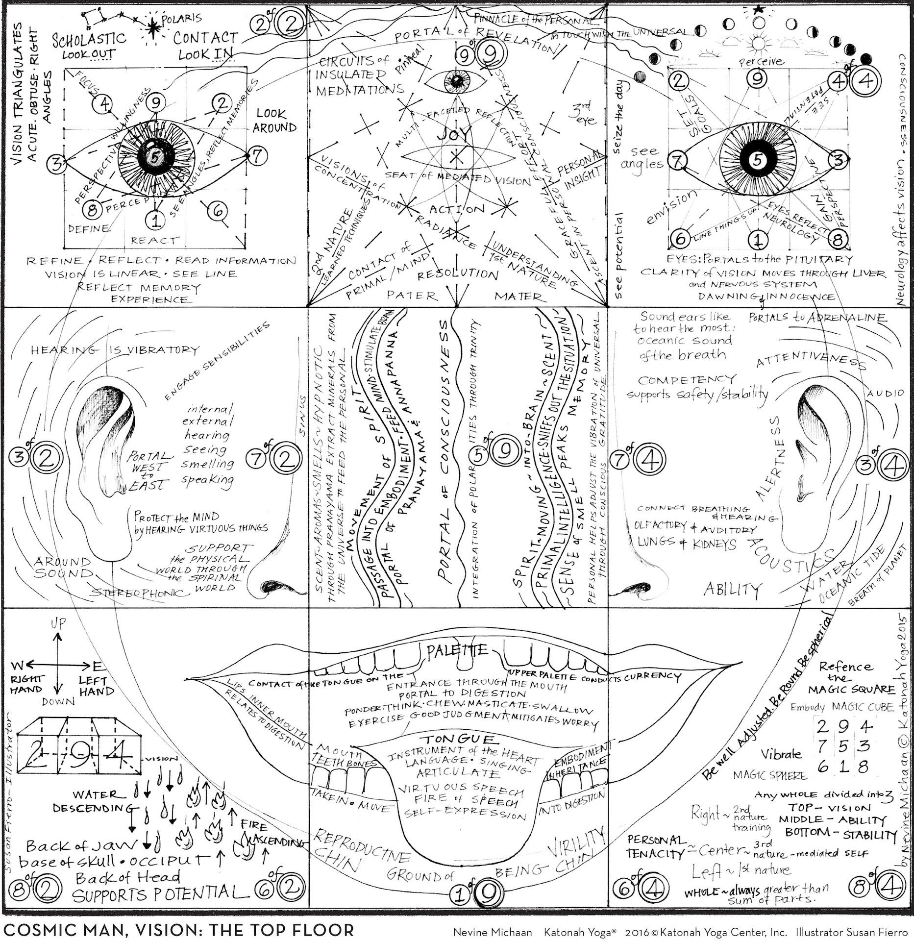 BODY AS ARCHETYPE MAPS