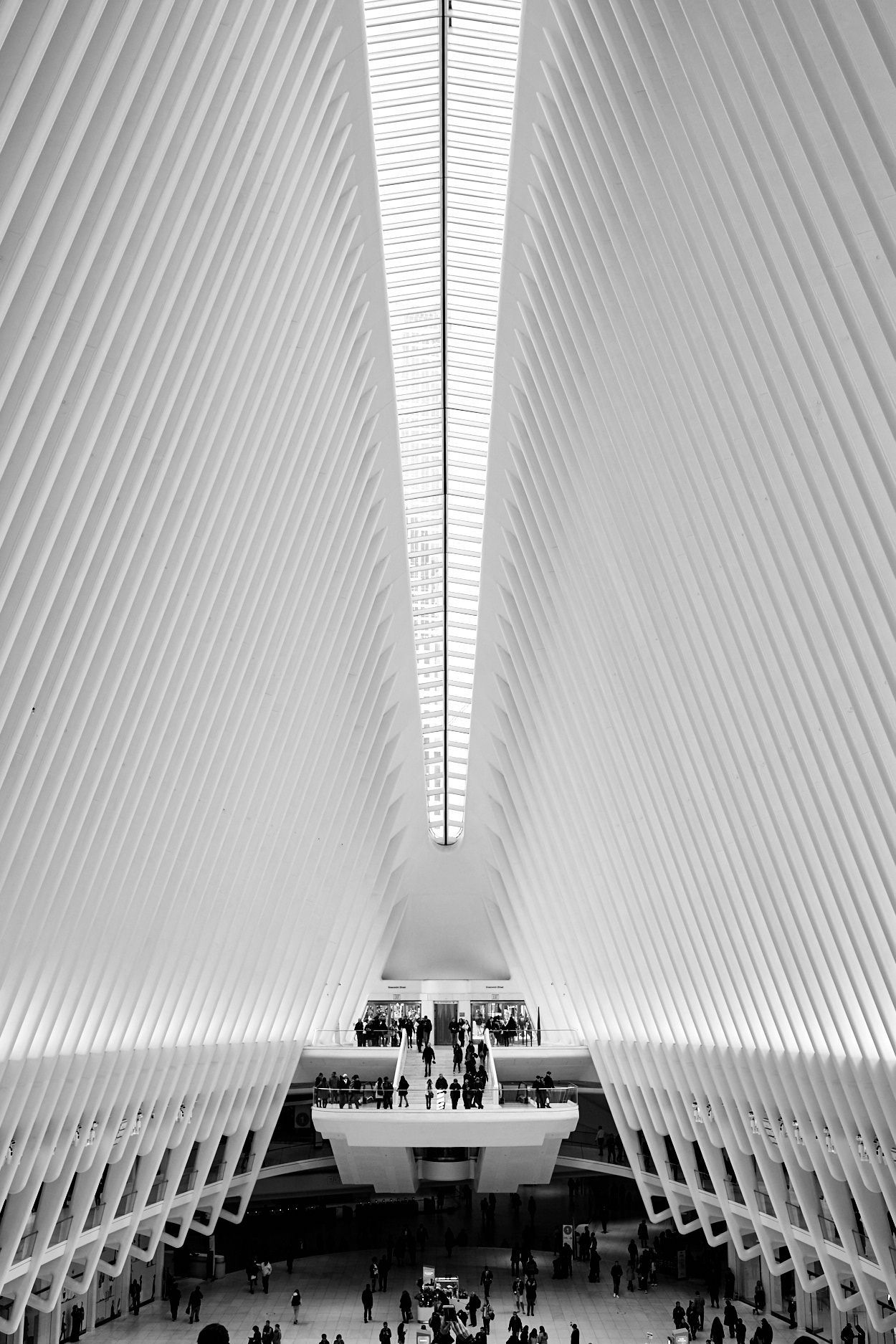 The-Oculus-New-York-Ryan-Parker2.jpg