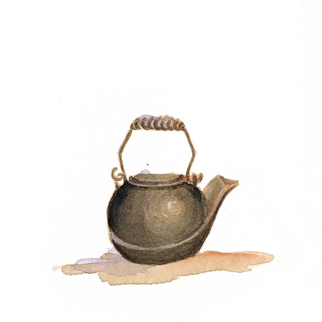 Tea in the pot, garden soup, bread...