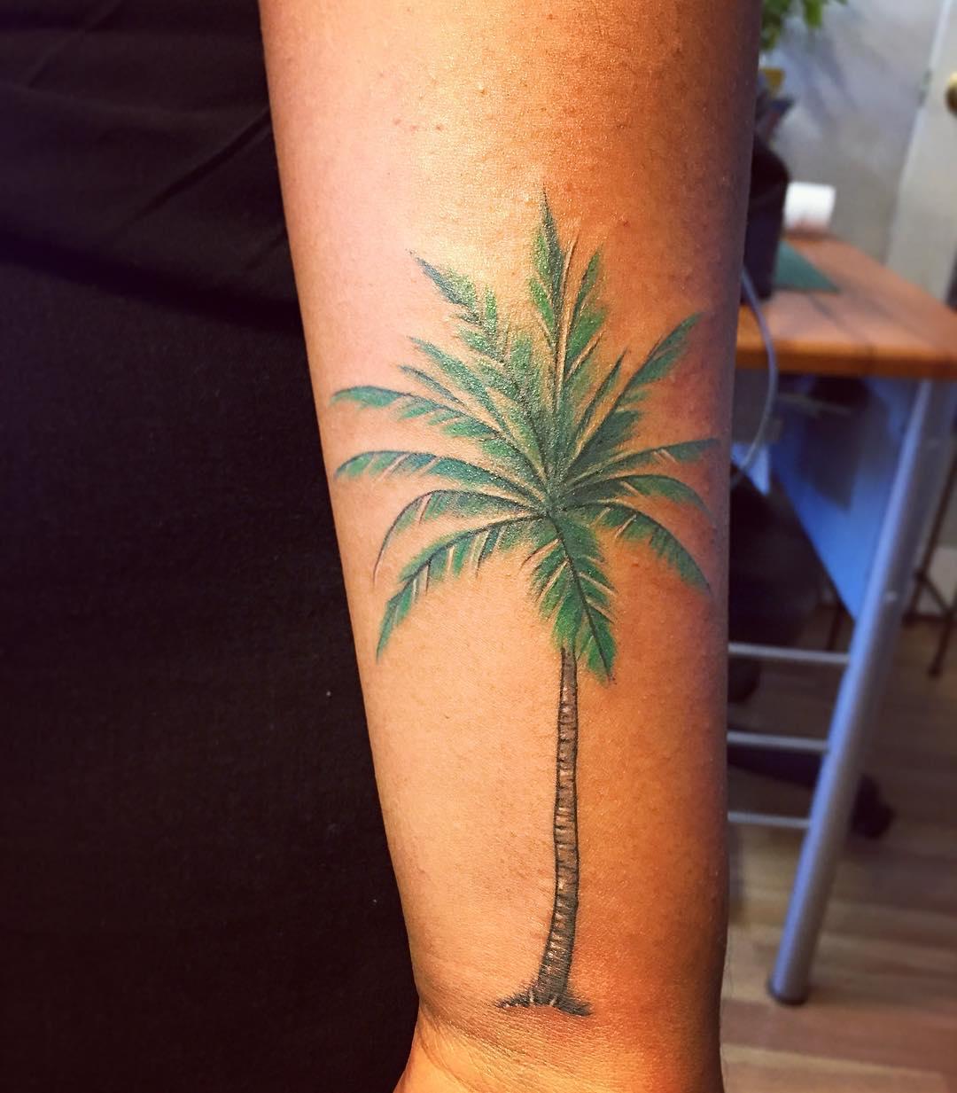 Cute_little_palm_tree_I_did_last_week__.jpg