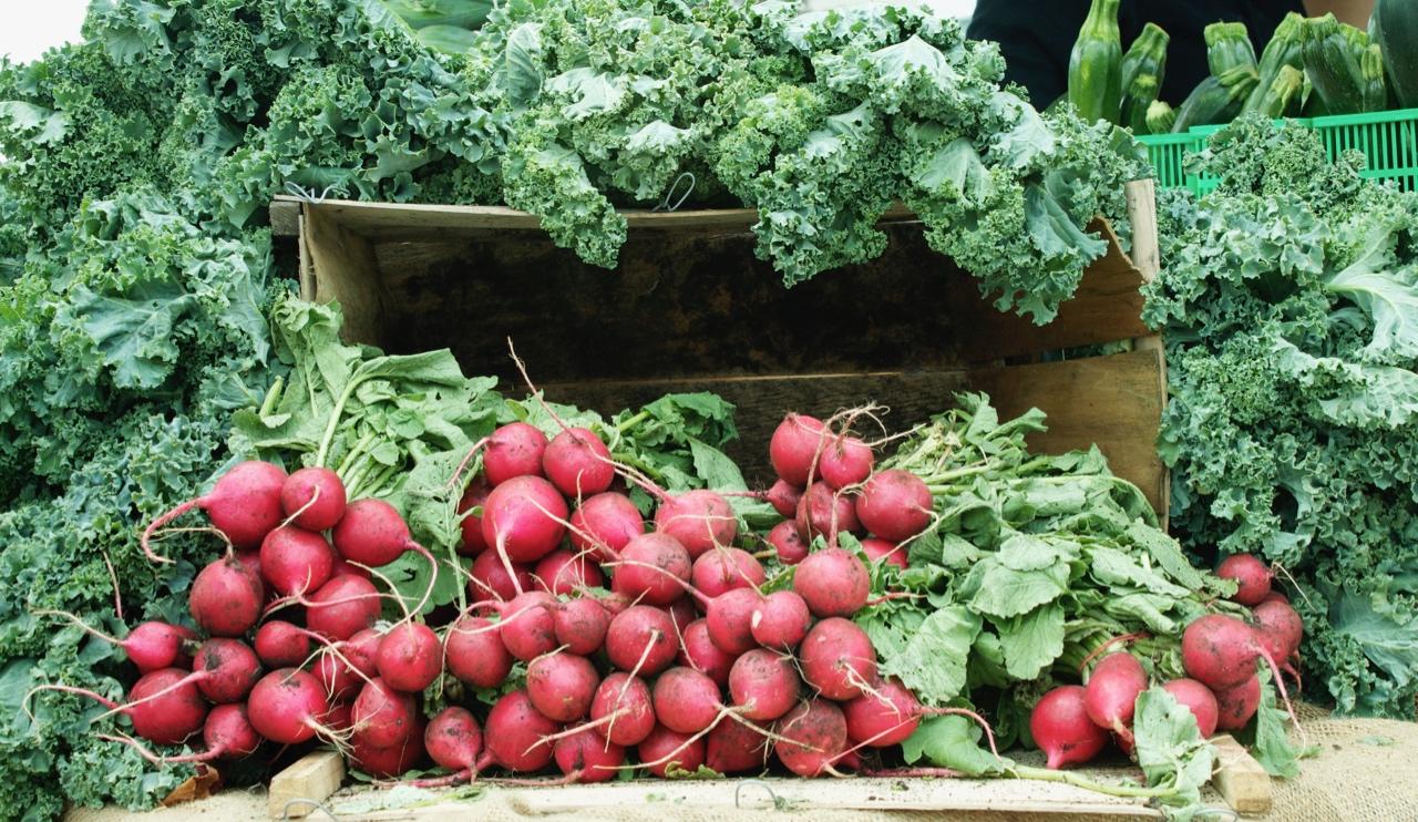 Fresh kale & radishes at the Trinity Bellwoods Farmer's Market in Toronto