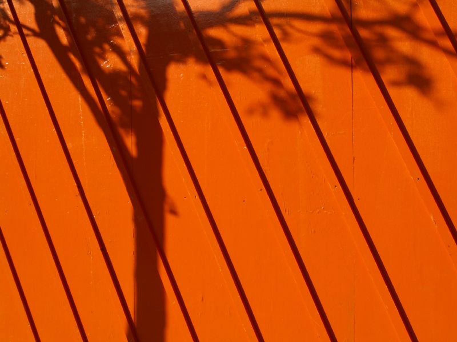 orange_shadow_4.jpg