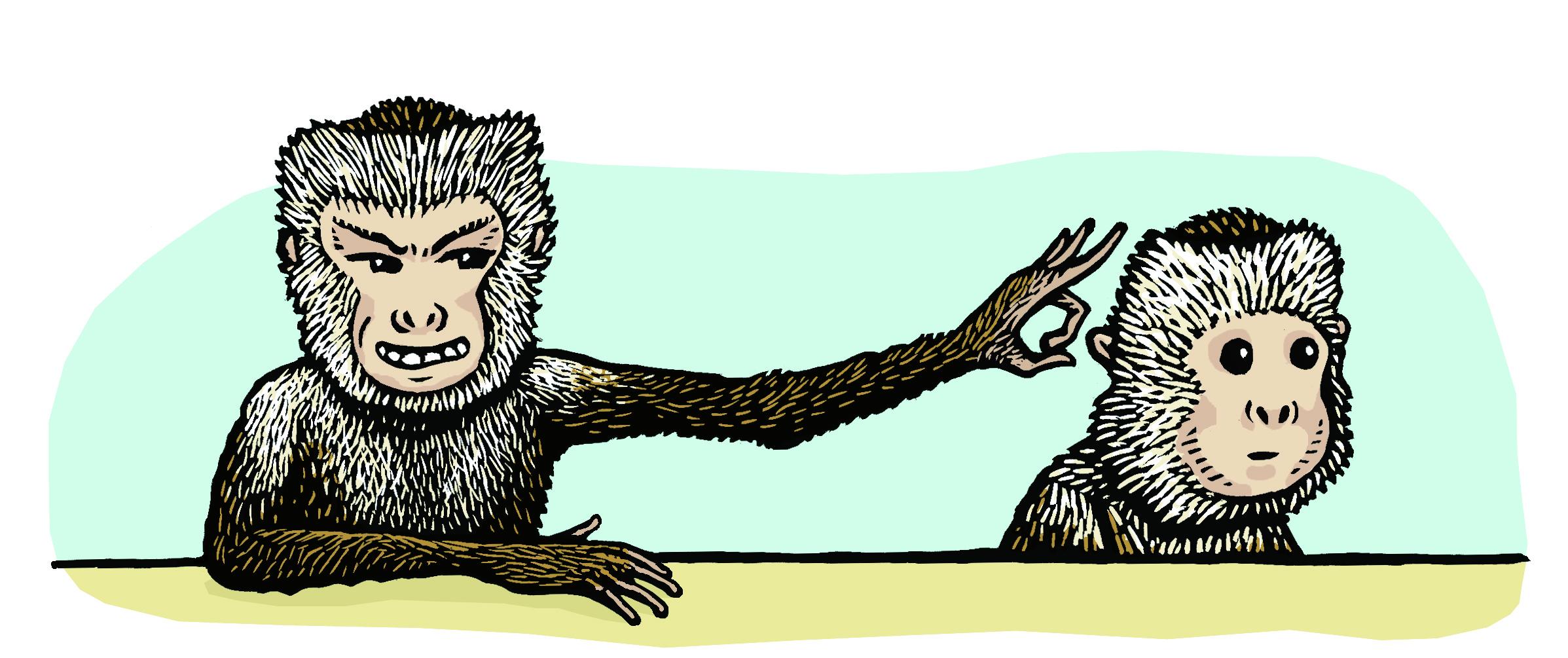 monkey spite final.jpg