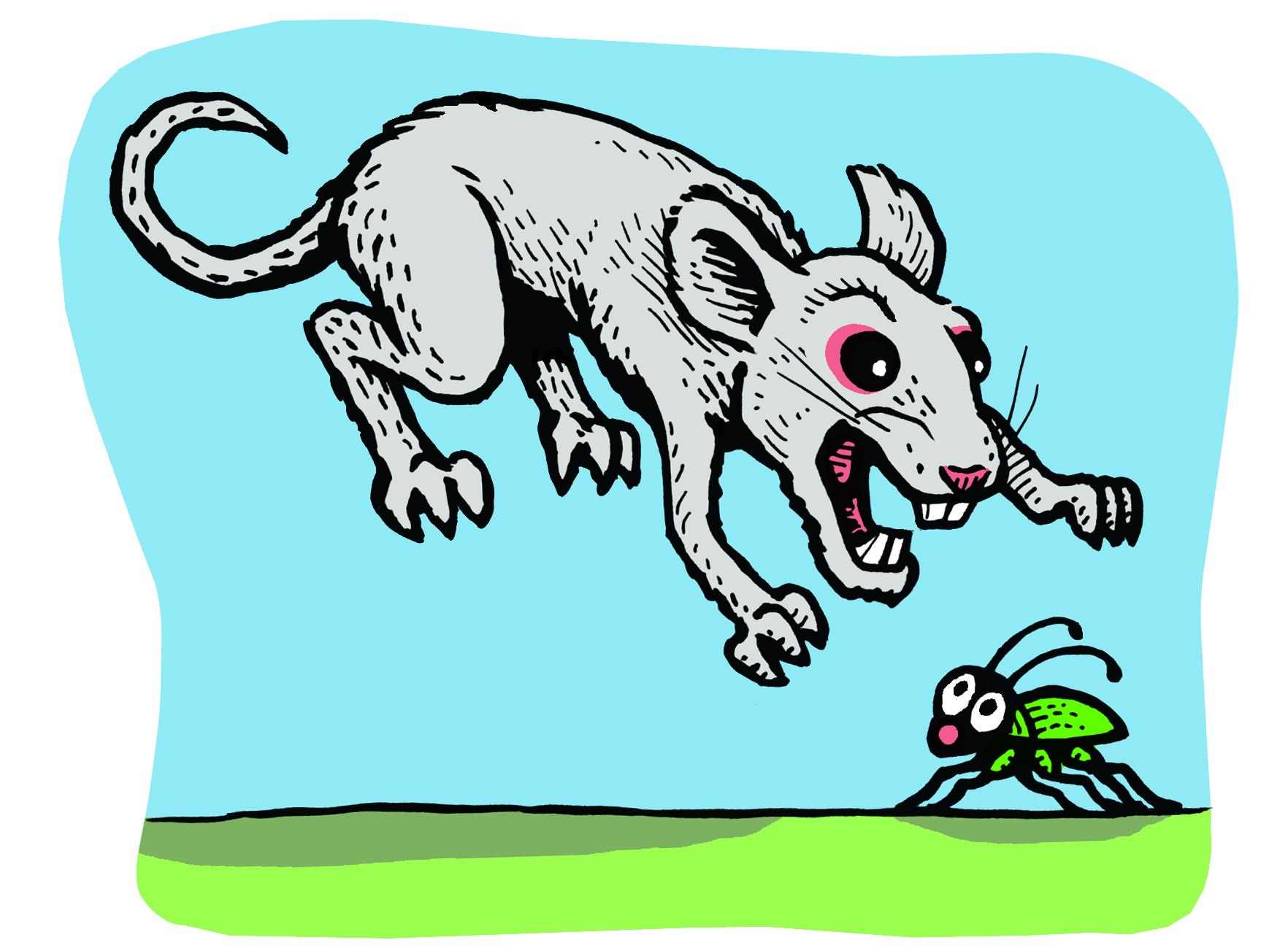 hunter mouse.jpg