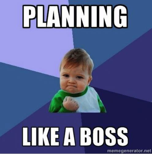 planning-like-a-boss-memegenerator-net-wedding-planning-memes-53128529.png
