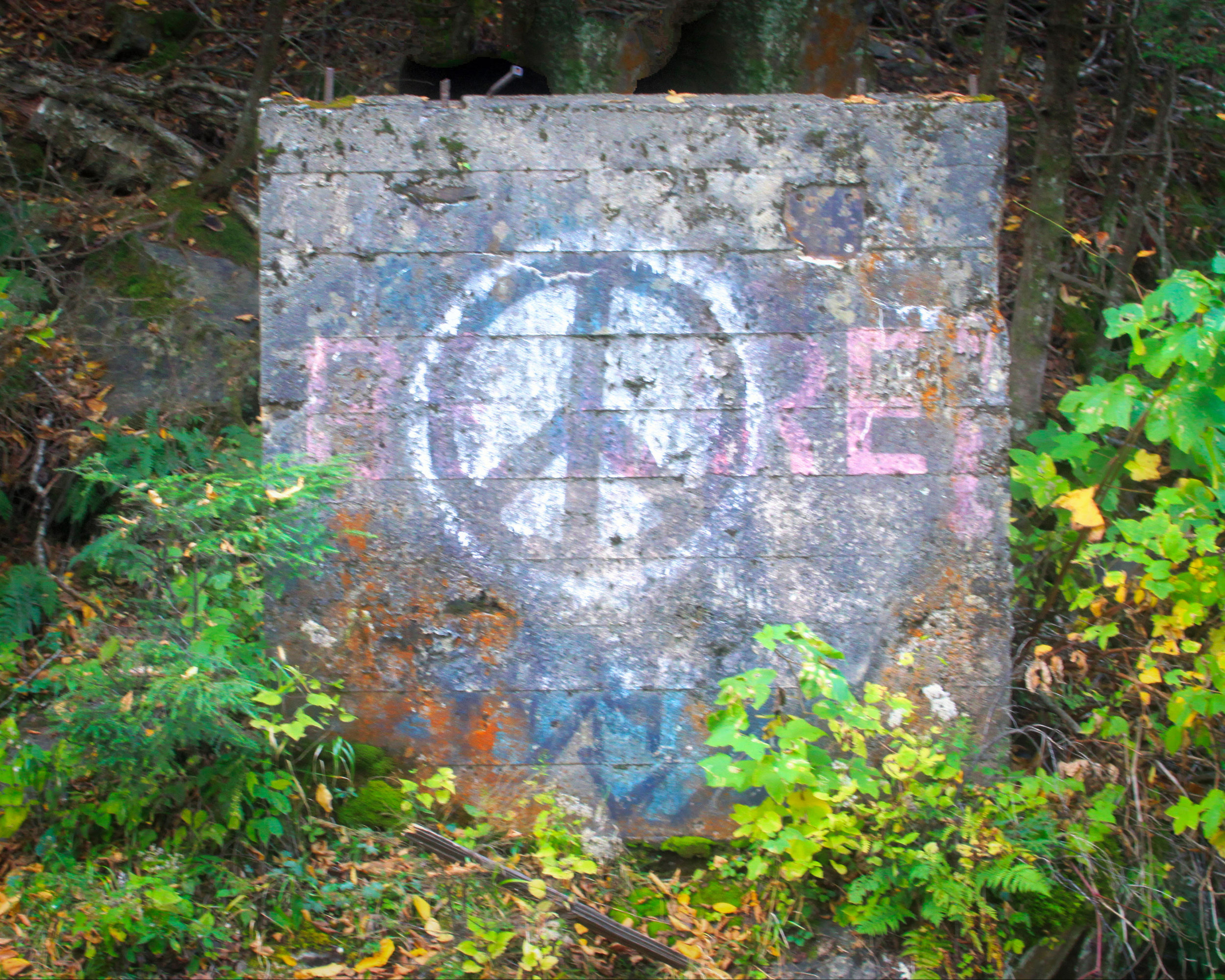 """Peace at Bartlett Falls"" Coutesty of Anne Majusiak. (c) Anne Majusiak 2018"