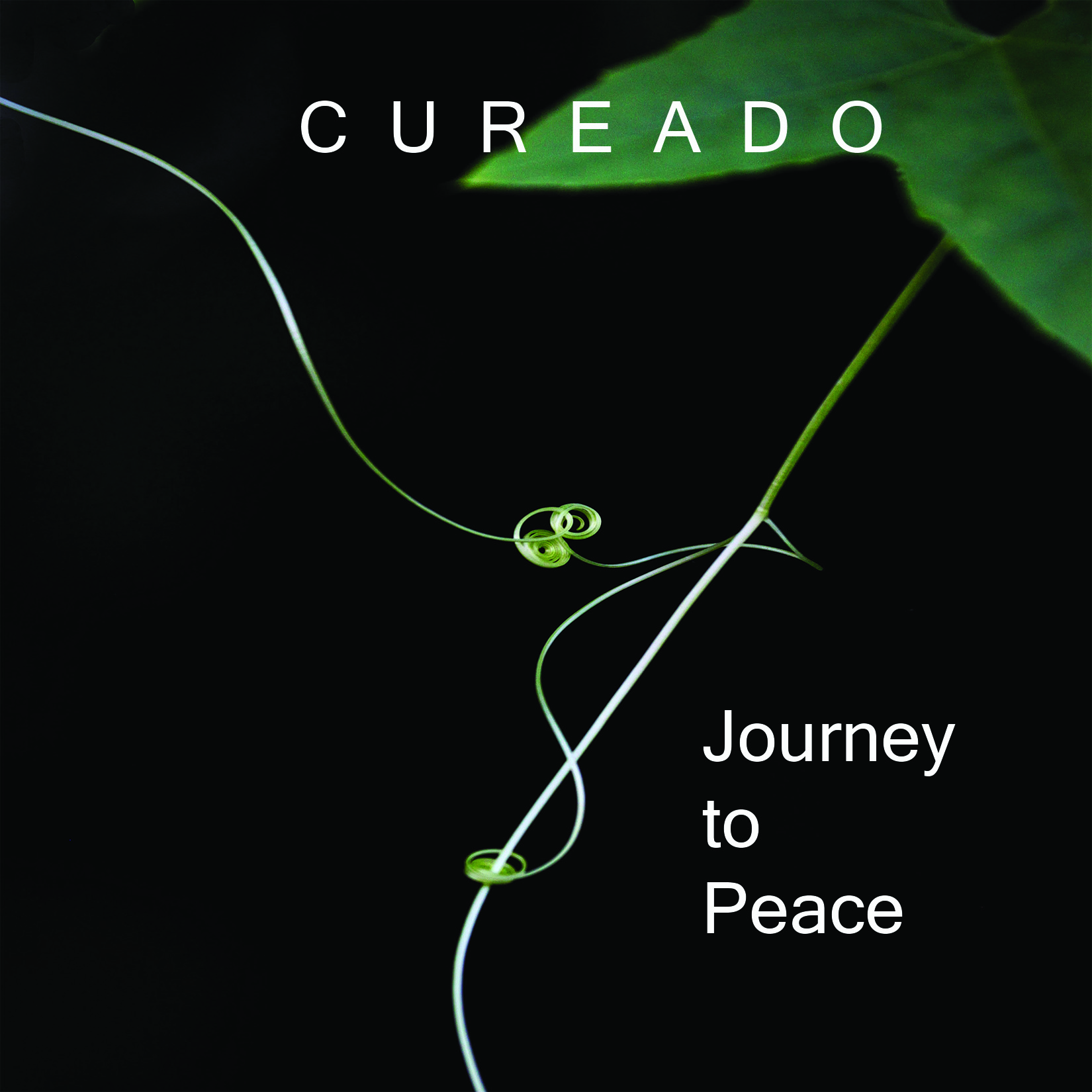 """The first Cureado EP, Is now available for listening and purchase. Photo """"Vine Tendril"""" courtesy of Anne Majusiak. (c) 2018 Anne Majusiak."""