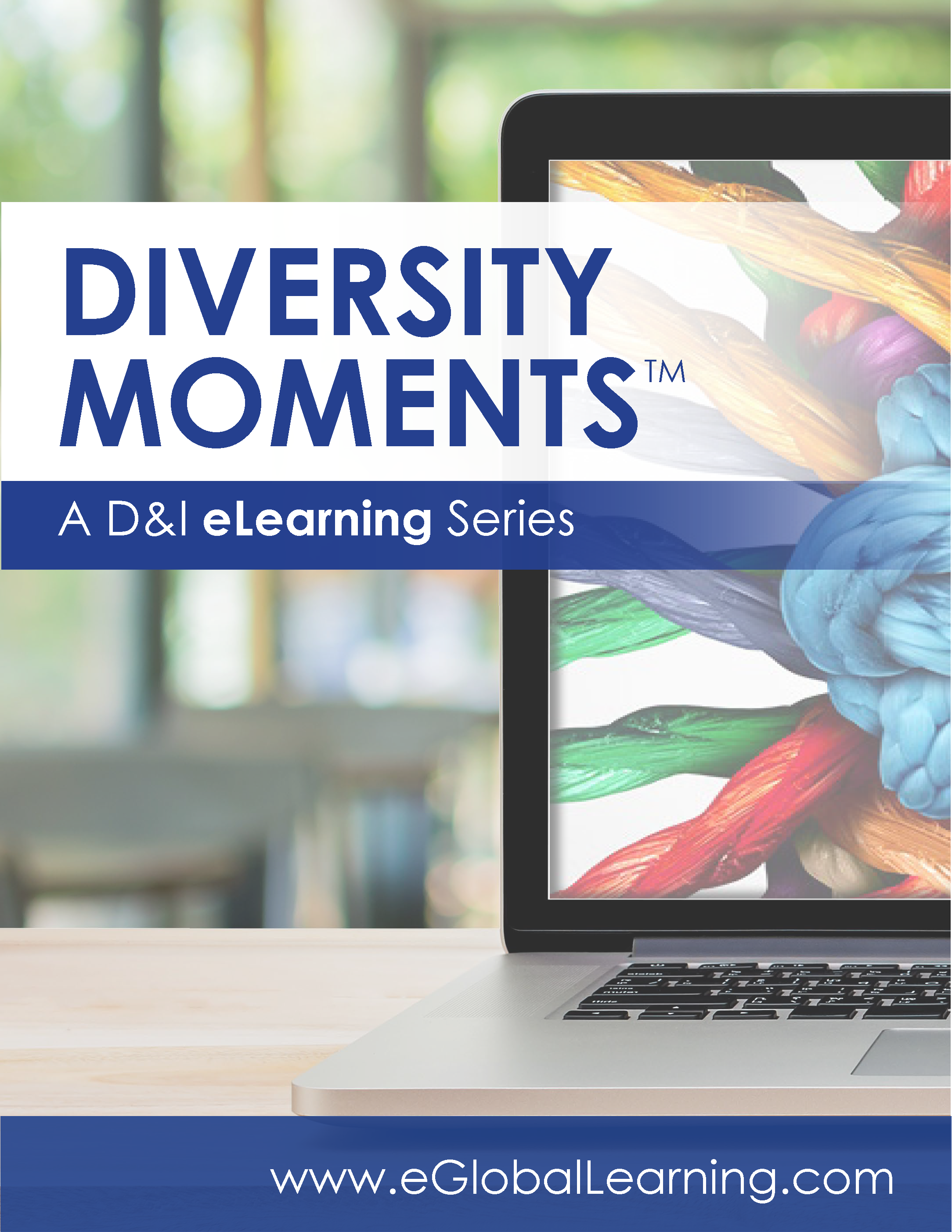 Global Learning - Diversity Moments - Brochure Cover