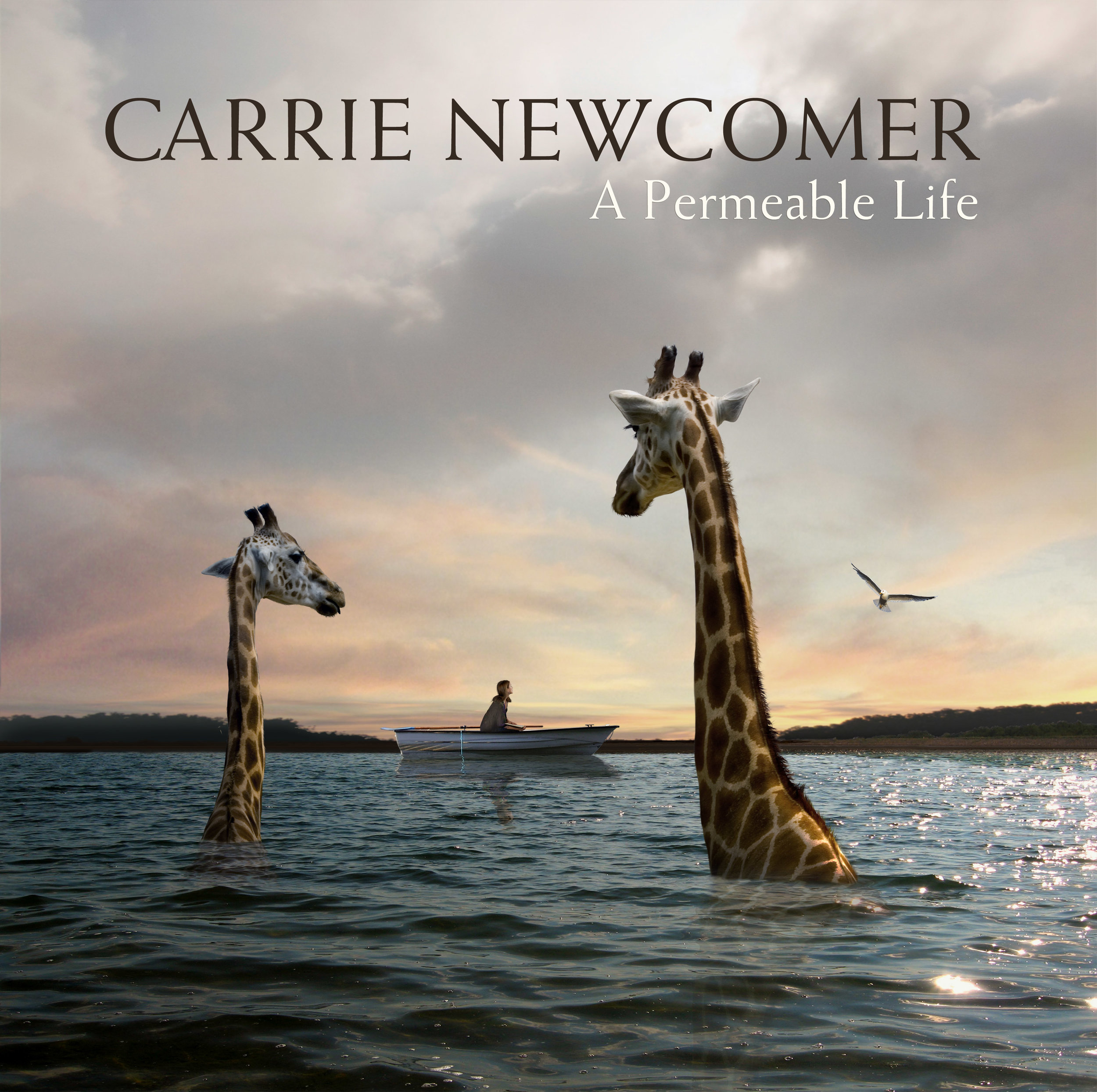 A Permeable Life | Carrie Newcomer