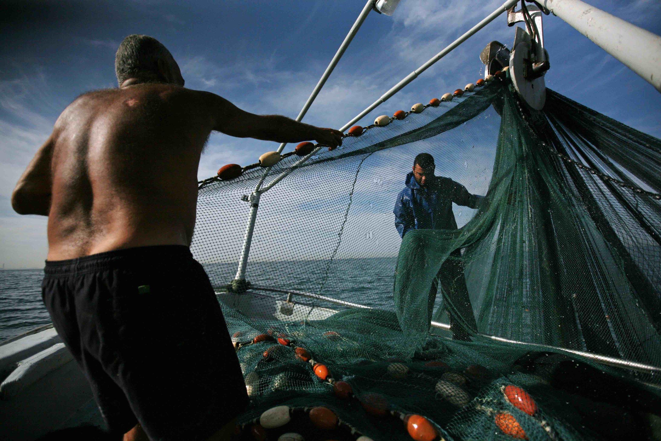 Fisherman working / Israel 2010
