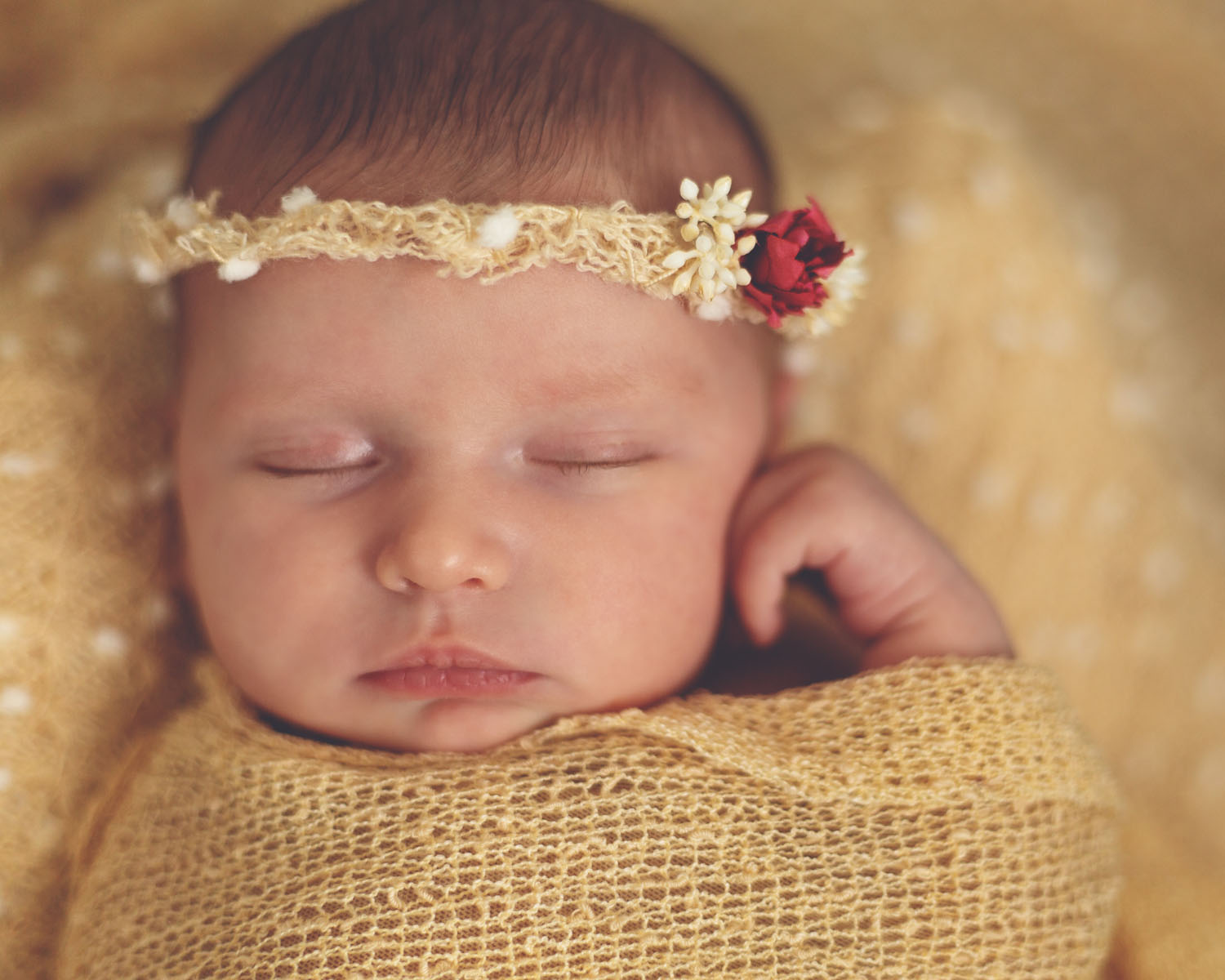 professional newborn photography of baby girl with yellow blanket and a yellow headband with a red flower