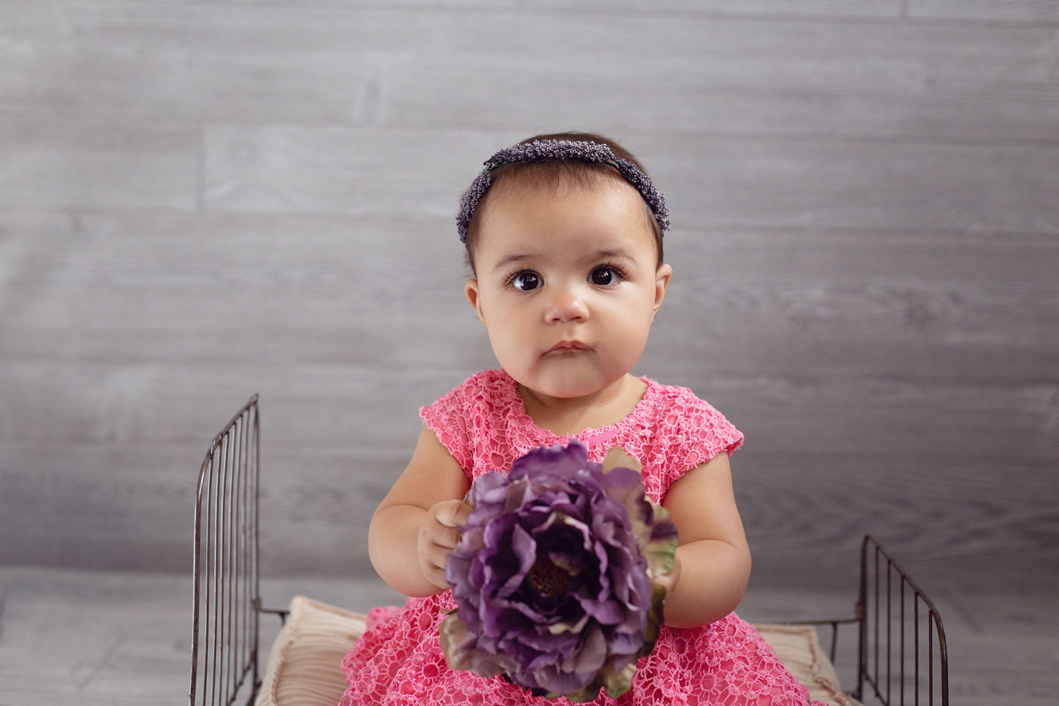 sitter milestone photograph of baby girl holding a flower
