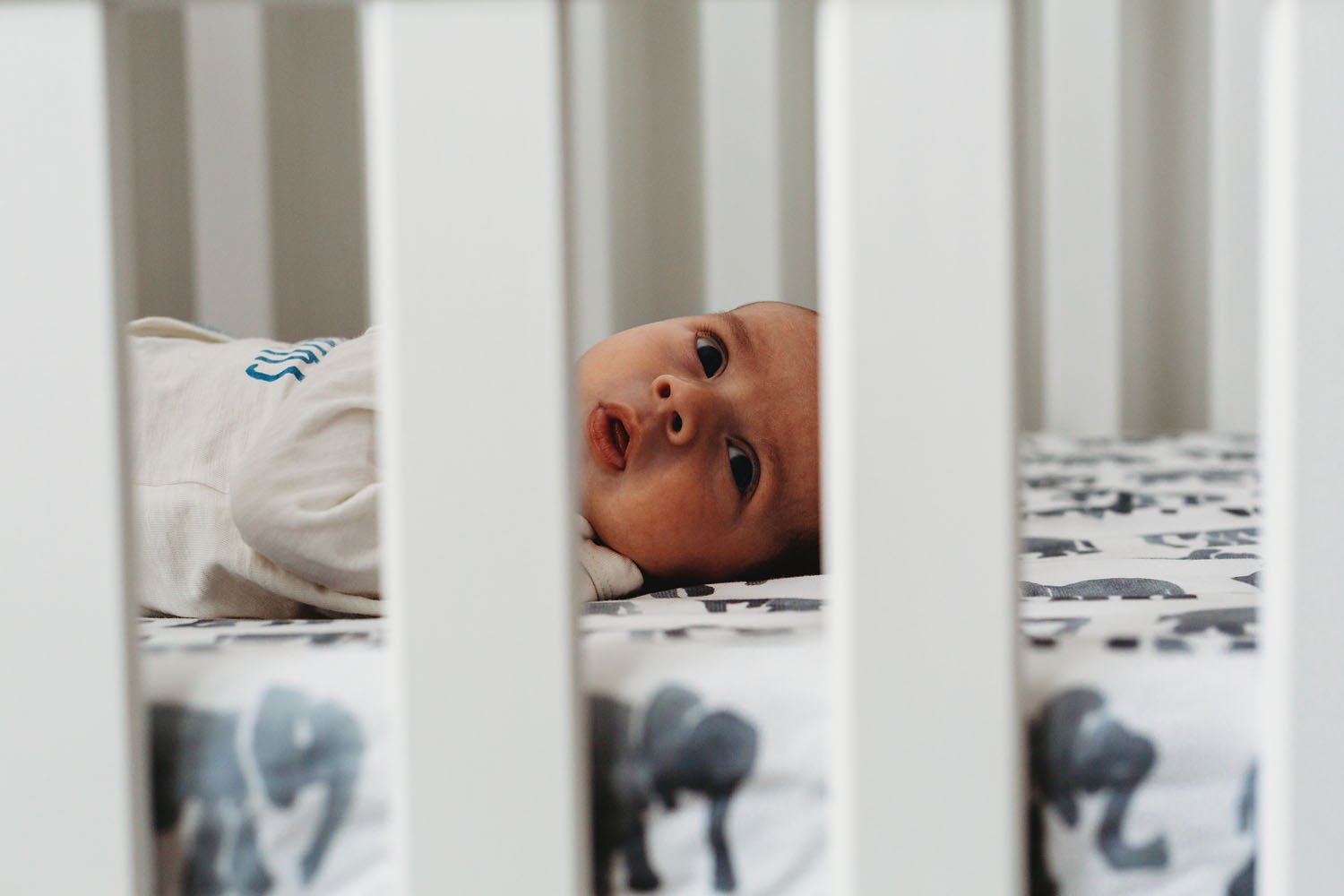 in home newborn photography in rutherford new jersey