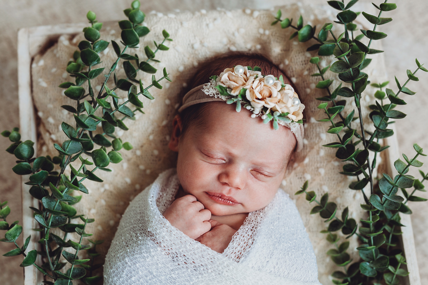 newborn photography in bergen county new jersey