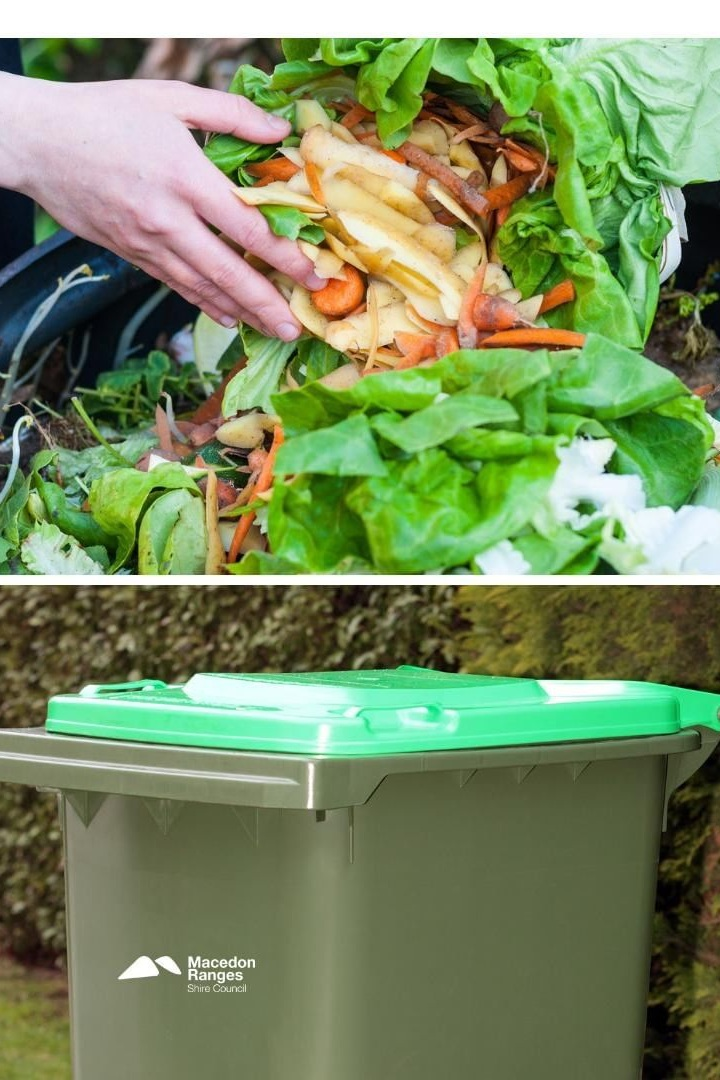 You can now put vegetable and fruit scraps in the green bin.