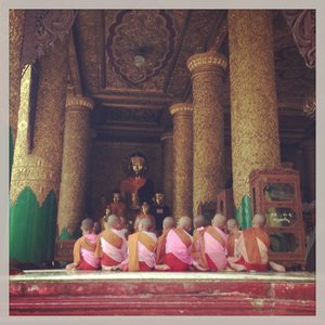 Nuns in Myanmar - At the most important Buddhist shrine in the country I encountered some wonderful singing in the early morning rain.