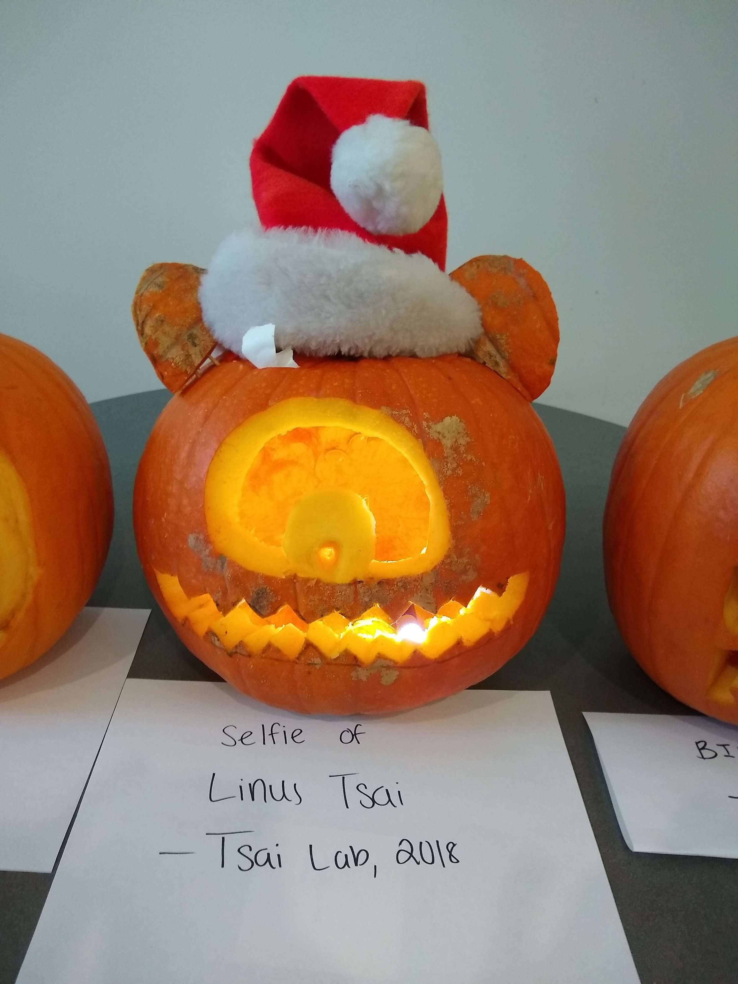 The ears are spot on. Seriously, how could that mug not win best pumpkin?