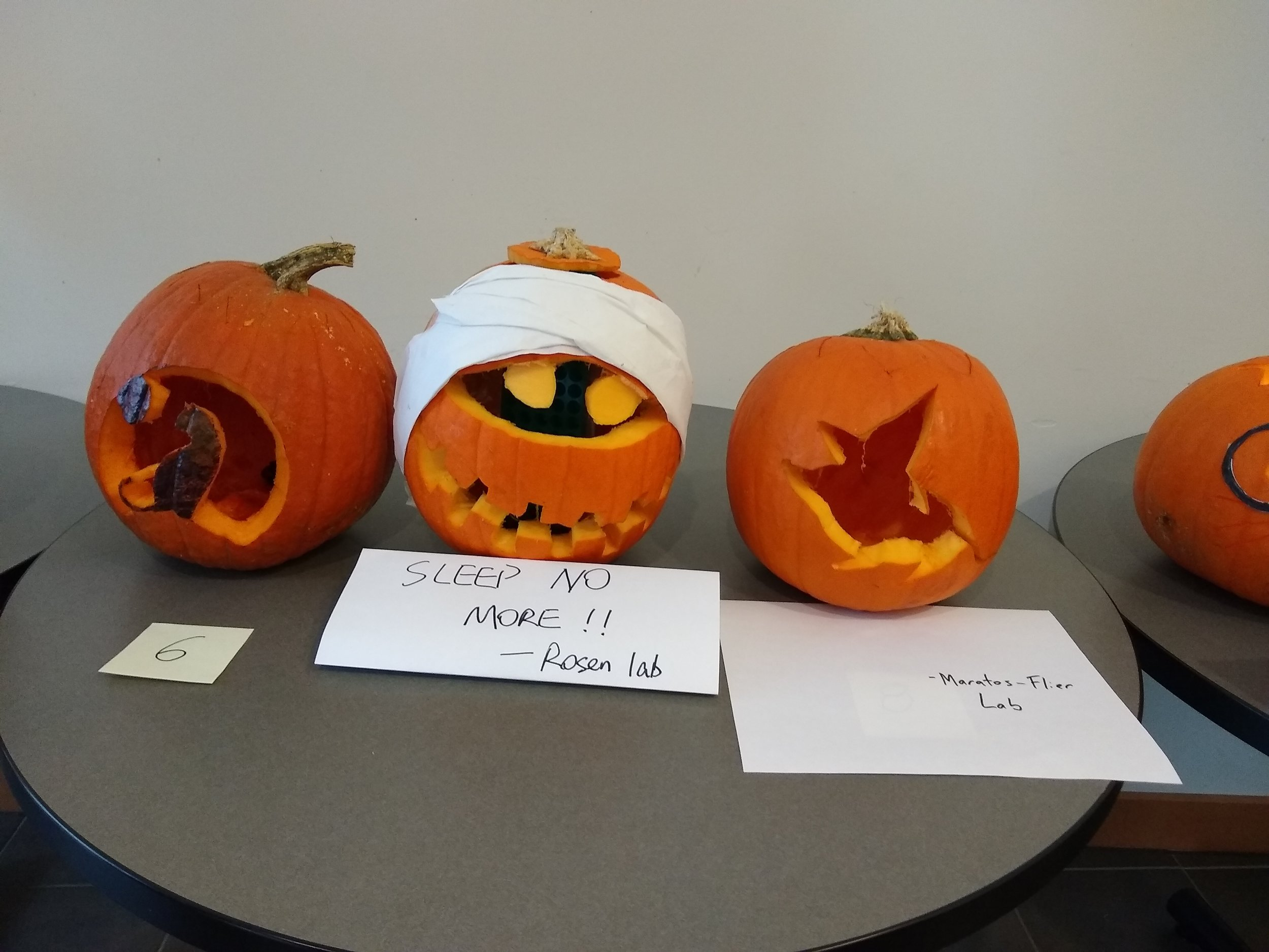 Maratos-Flier lab pumpkin Rorschach test: what do you see? Mouse in a witches hat? Hummingbird dropping a deuce?