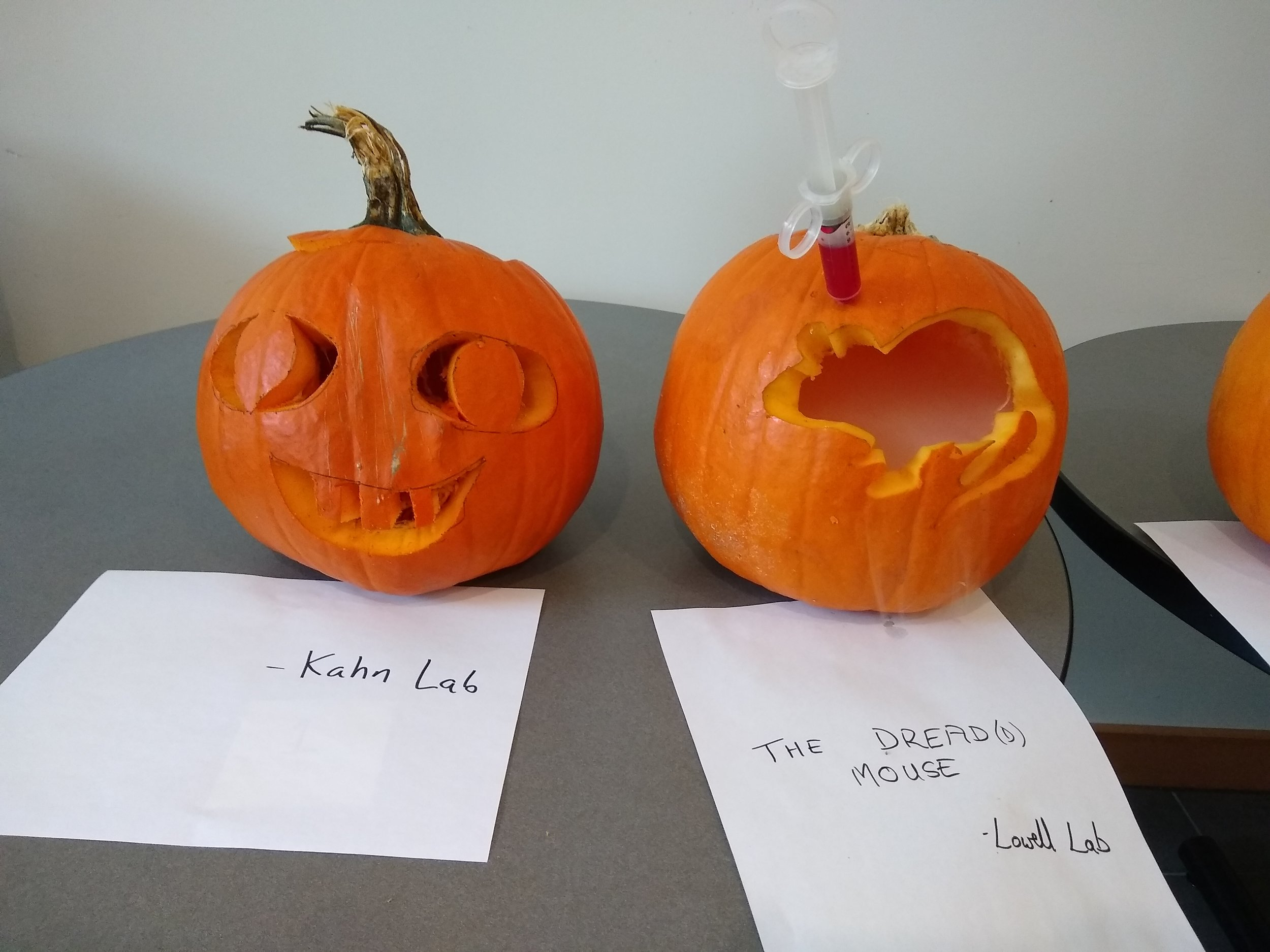 Well actually the DREADD mouse pumpkin won first place. Congrats to the Lowell lab team!