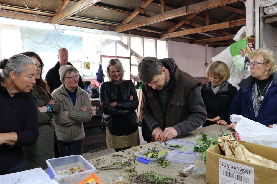 Helping teachers upskill in conservation education through professional development workshops, like Propagation 101 facilitated by local ecologist Nick Singers, is paramount for increasing awareness and participation of children and young people.