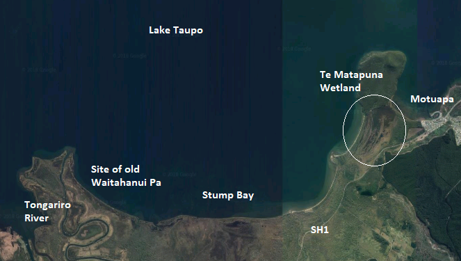 South Taupo Wetlands.png