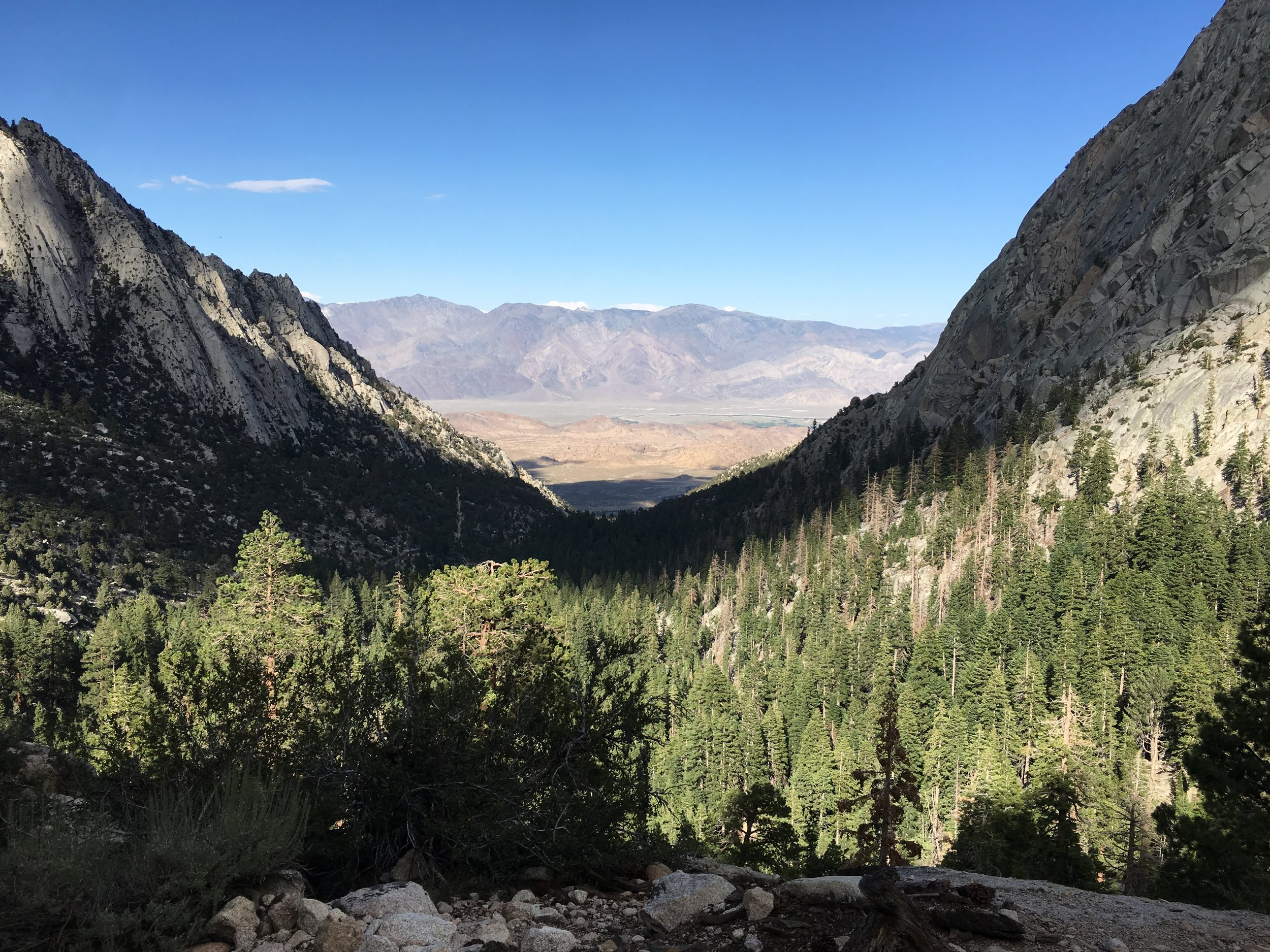 View from whitney trail looking east.JPG