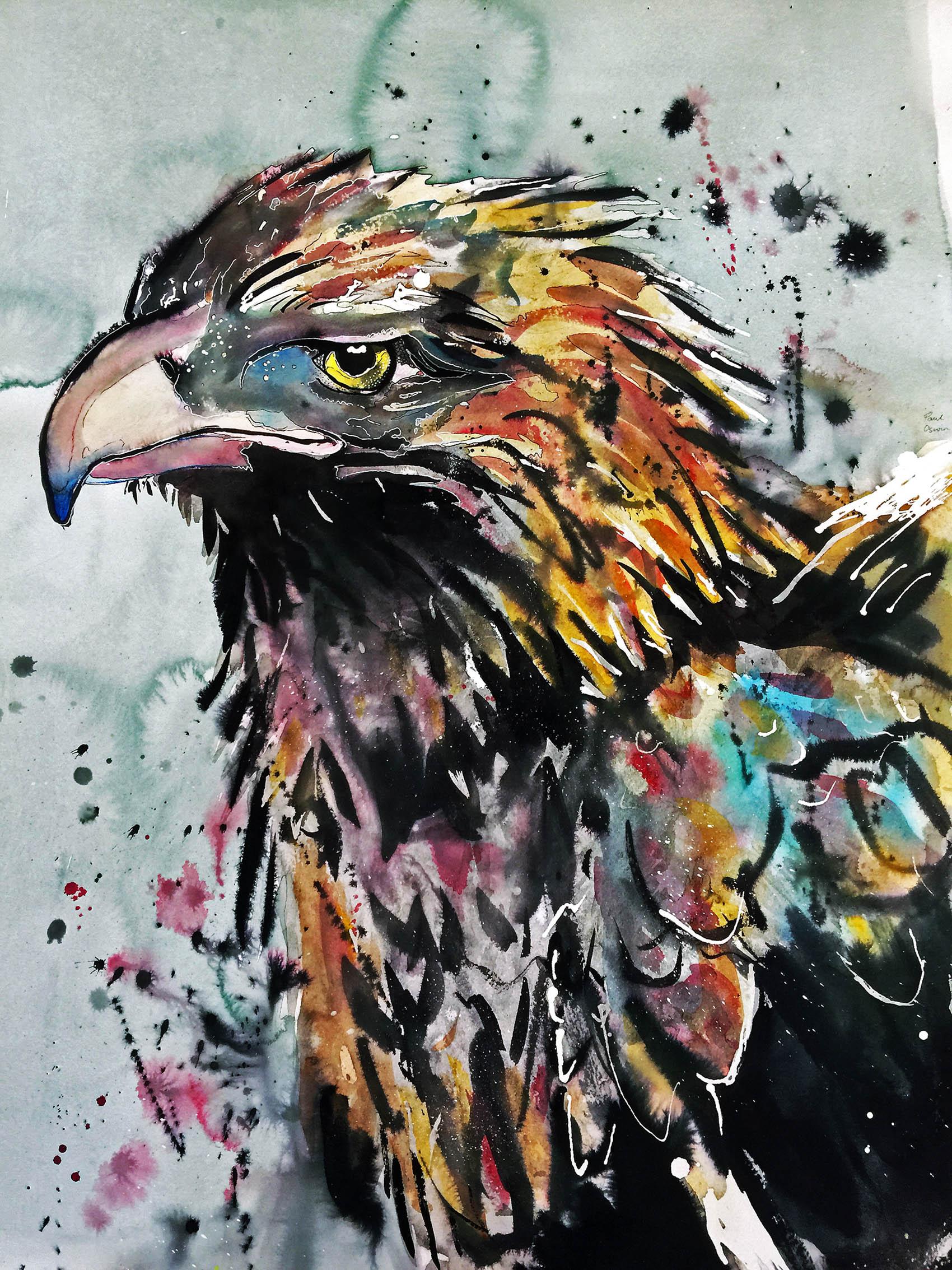 Expressive Eagle