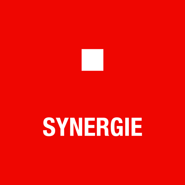 _0003_Synergie.jpg