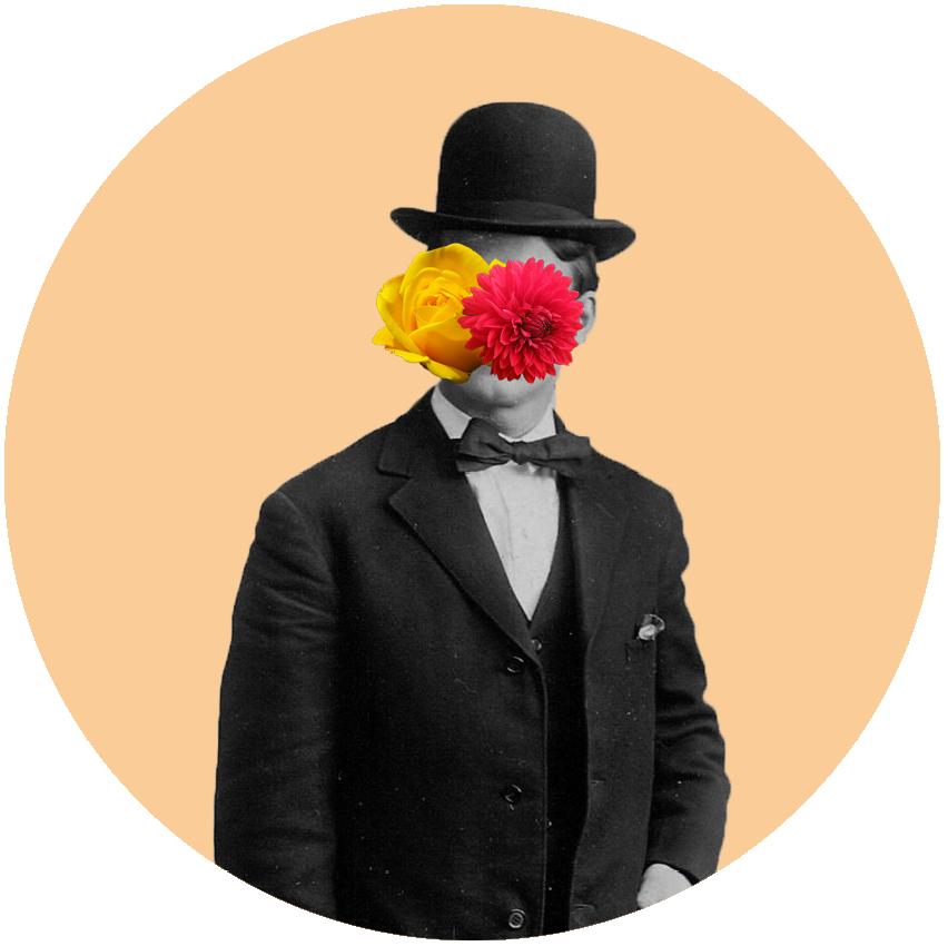 Mr Florista Montage