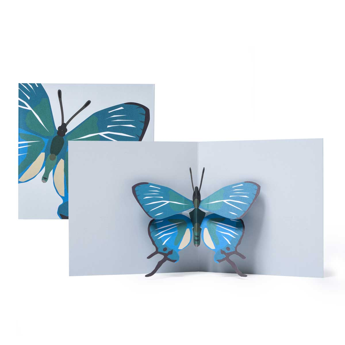 2-to-Tango_Blue-Butterfly-Pop-up-card_MaikeBiederstaedt.jpg.jpg