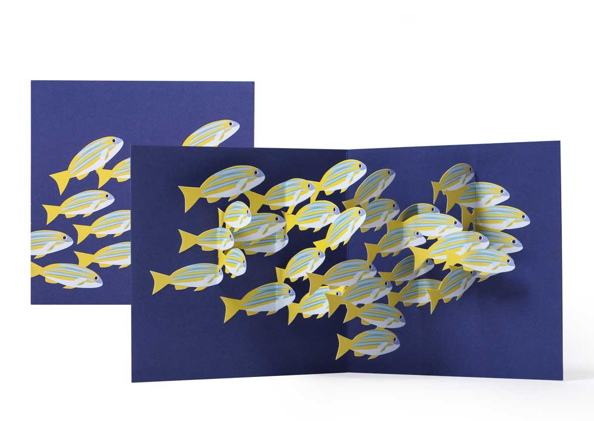 Pop-up-card_2toTango_SeaCreatures_SchoolofFish_Biederstaedt_1200x850px.jpg.jpg