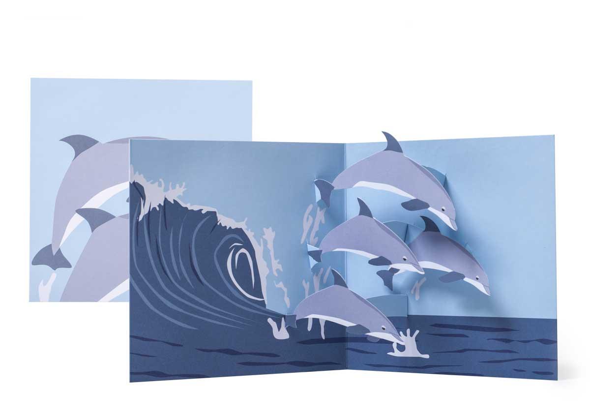 Pop-up-card_2toTango_SeaCreatures_Dolphins_Biederstaedt_1200x850px.jpg
