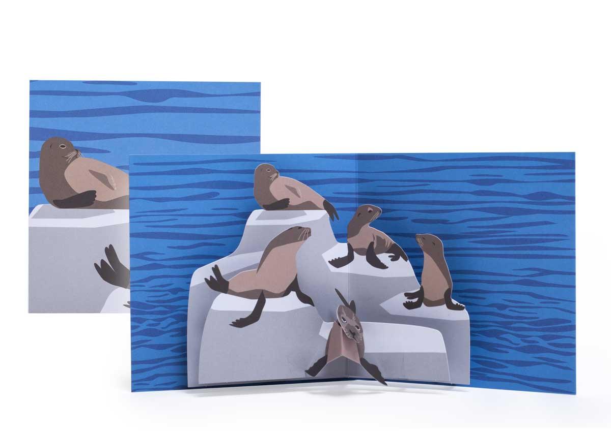 Pop-up-card_2toTango_SeaCreatures_Seals_Biederstaedt_1200x850px.jpg.jpg
