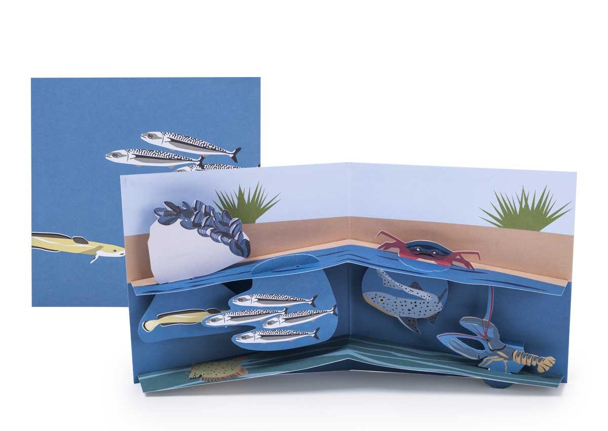 Pop-up-card_2toTango_SeaCreatures_Shoreline_Biederstaedt_1200x850px.jpg