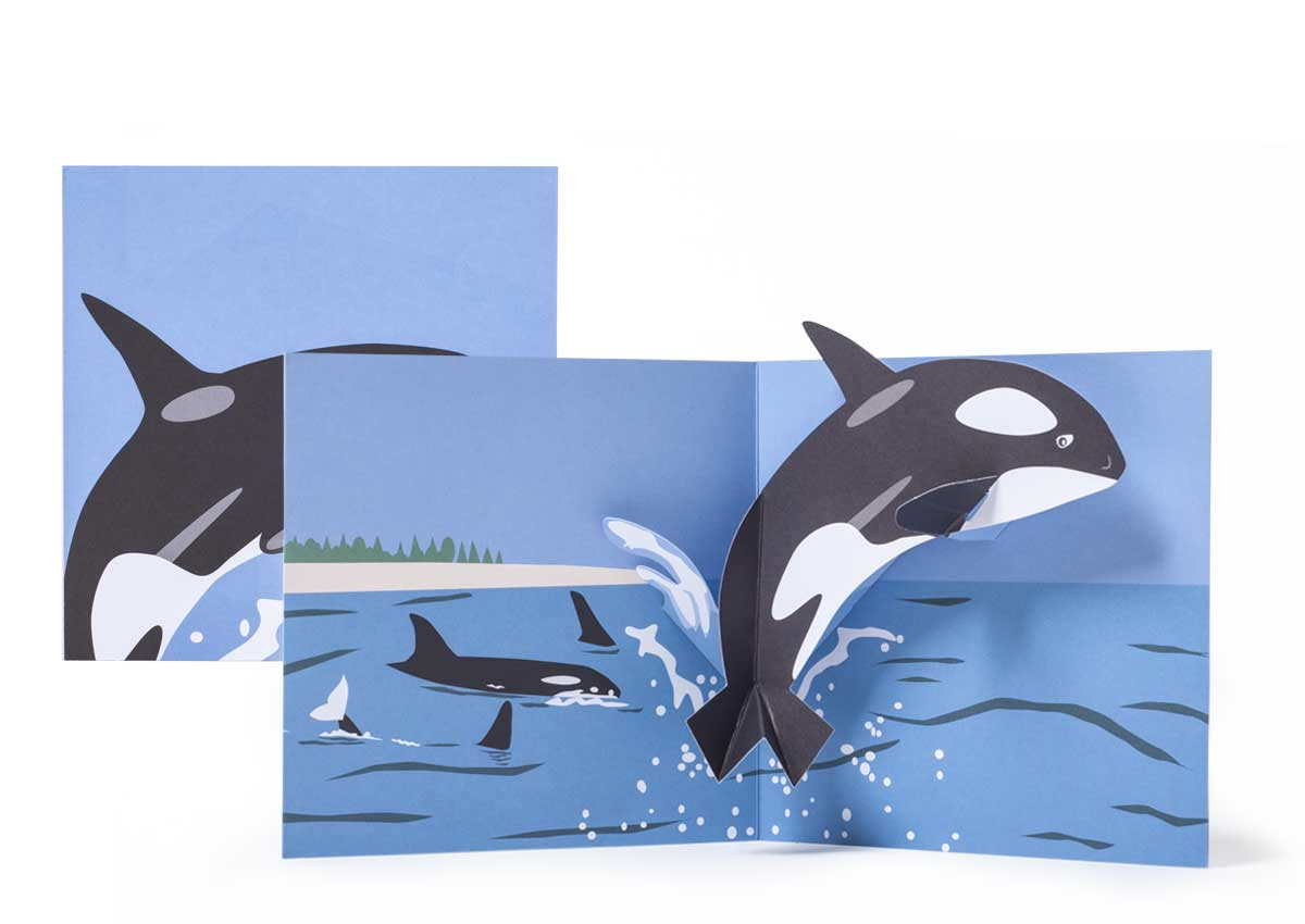 Pop-up-card_2toTango_SeaCreatures_Whale_Biederstaedt_1200x850px.jpg