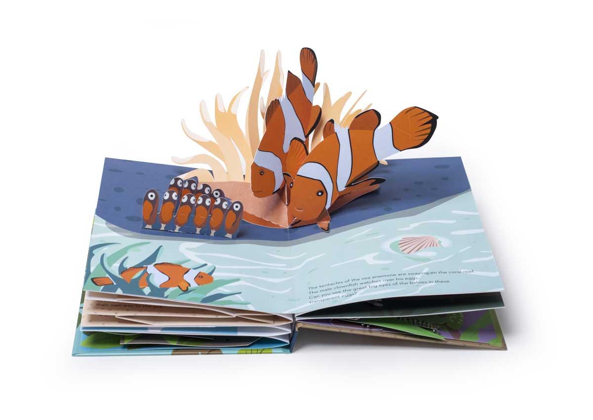 EggBook_Fish2019_Biederstaedt_1200x850.jpg