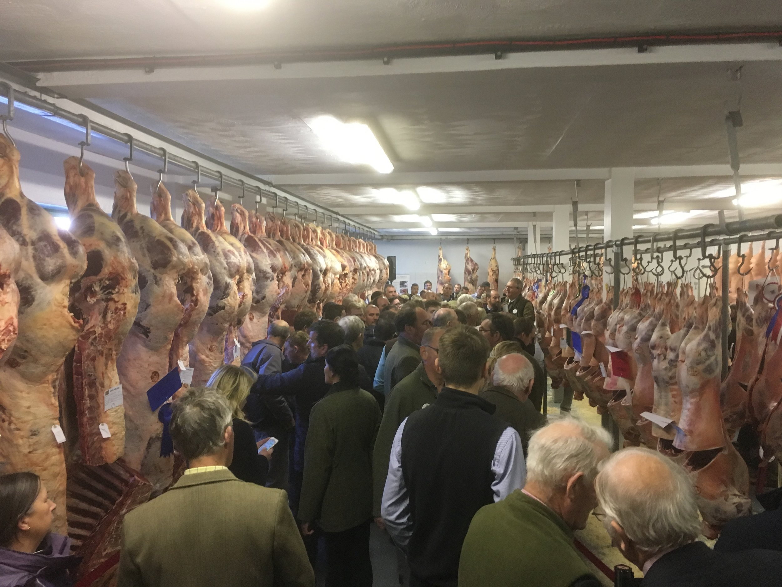 The packed Carcase Hall at Staffordshire Showground