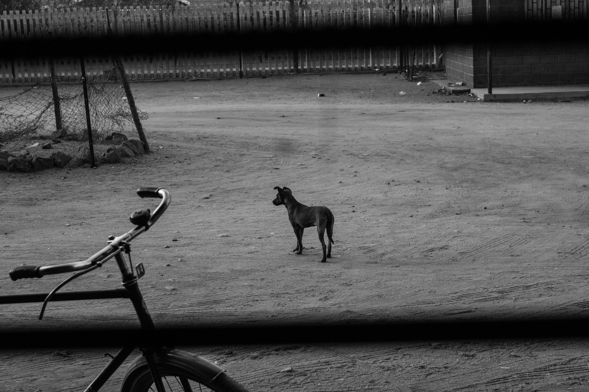 Tshepiso Mabula_15-min.jpg