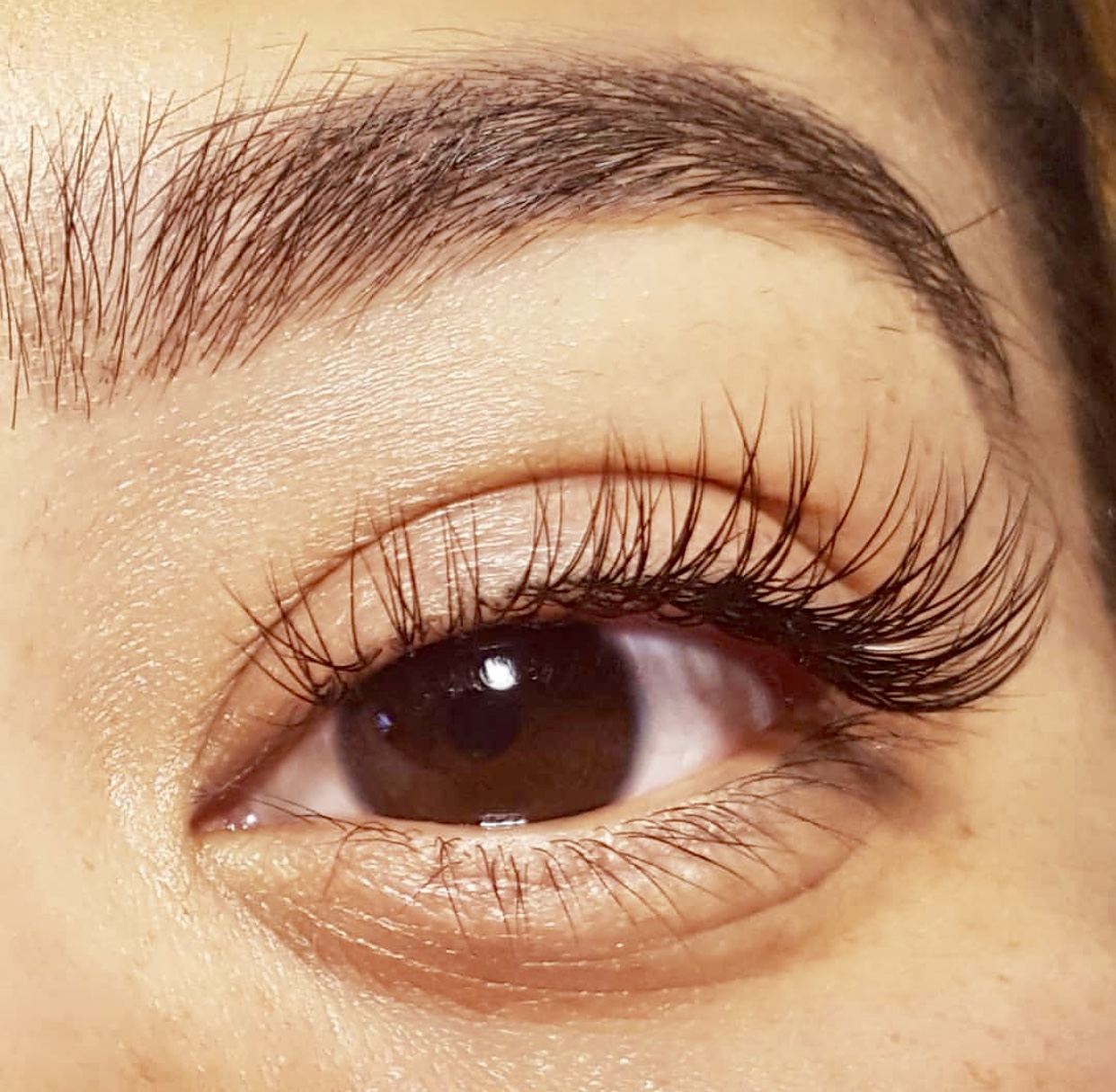 classic natural lash extensions