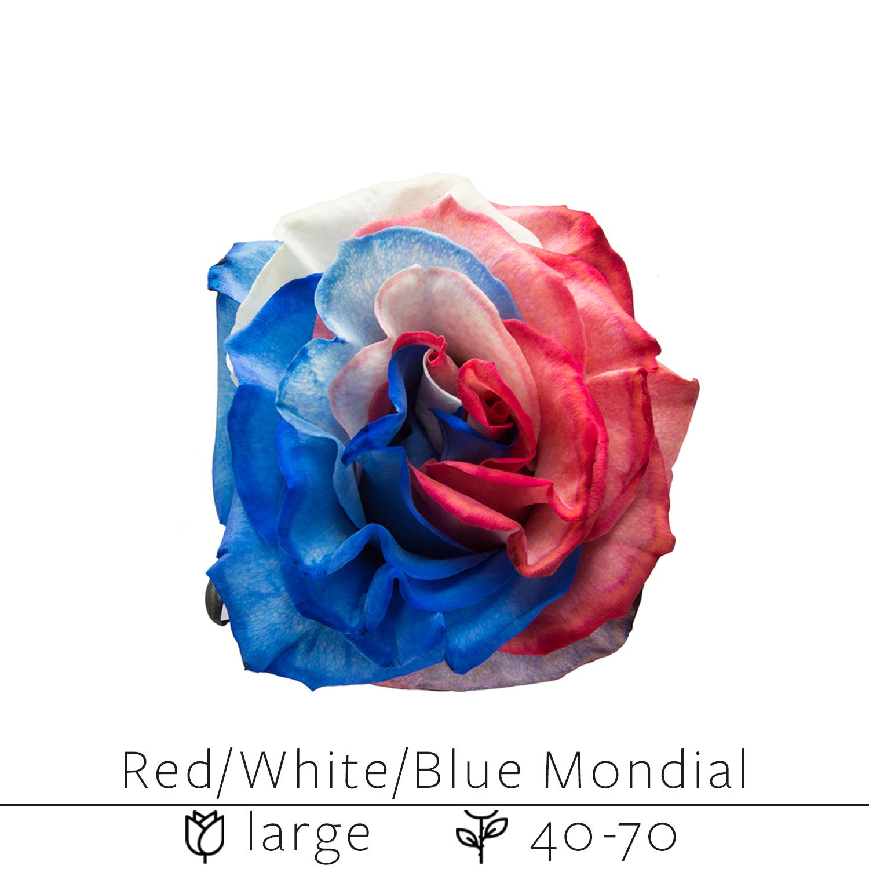 Red White Blue Mondial.jpg